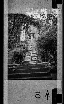 杉本寺1978